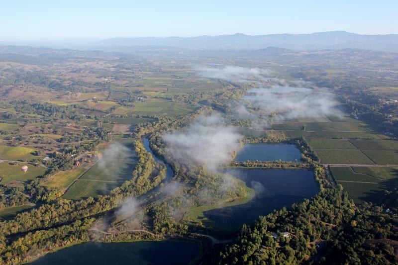 Fog in Sonoma County California