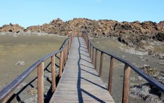 bartholomew island galapagos