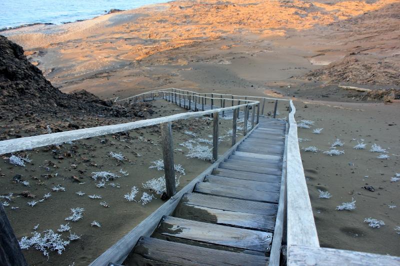 Galapagos Bartolome Island Hike