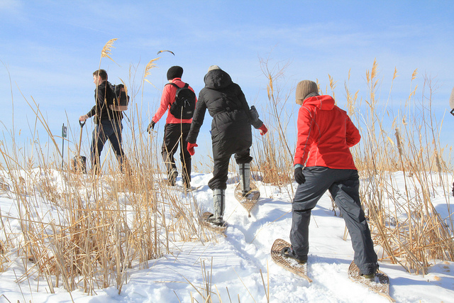 Snowshoe   Winter Things to Do