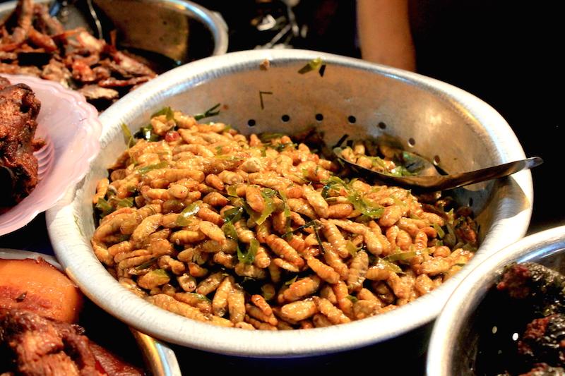 Silk Worm Larvae: Hanoi, Vietnam Street Food