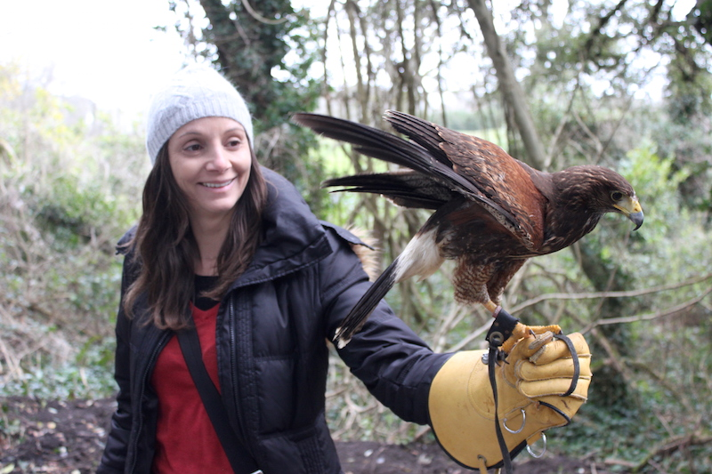 Annette White taking a falconry lesson at Dromoland Castle in Ireland