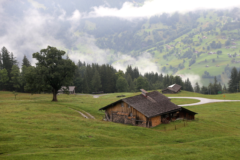 Scenery on the way to Jungfraujoch, swiss alps