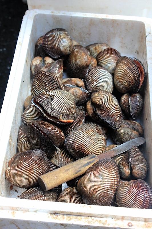 Shellfish at Tsukiji Fish Market in Tokyo