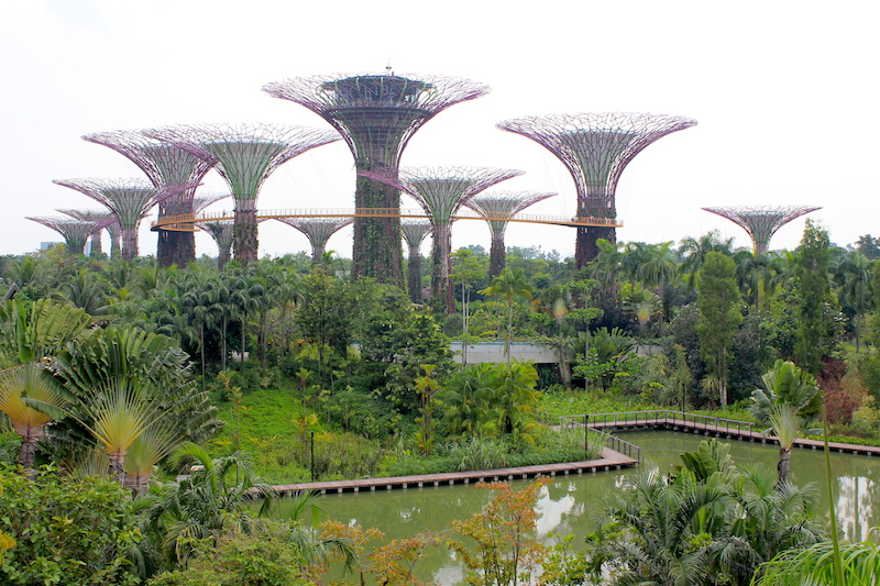 Singapore Gardens by the bay
