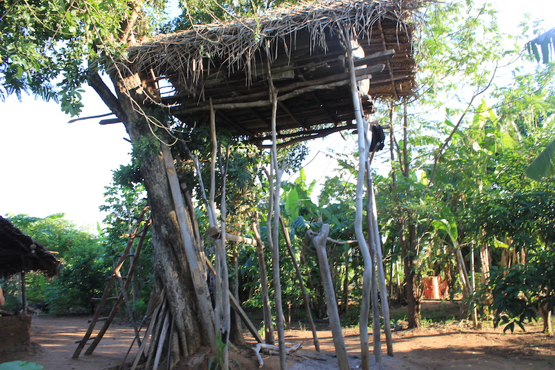 Treehouse on the Hiriwaduna Village Trek in Sri Lanka