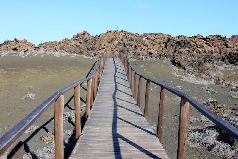 The planked walkway on Bartolome Island on the Galapagos Islands