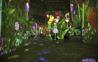Carrières de Lumières (Quarries of Light) in the South of France