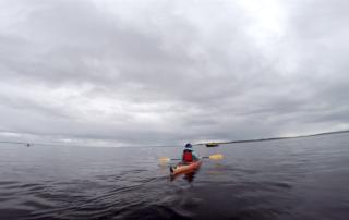 Kayaking with Beluga Whales in Churchill, Manitoba, Canada