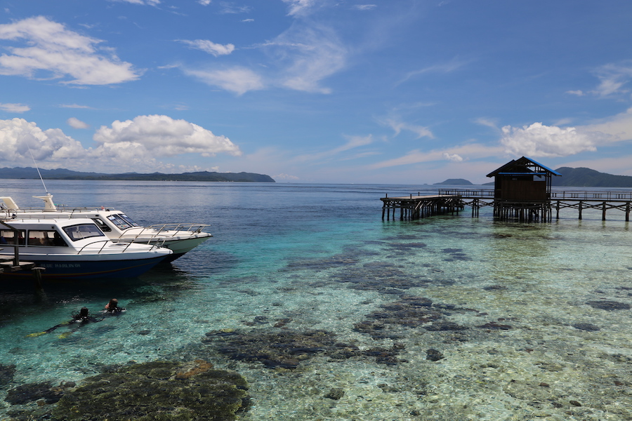 The blue water of Raja Ampat in Indonesia