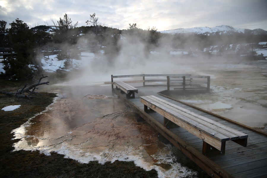 Mammoth Hot Springs in Montana's Yellowstone Country