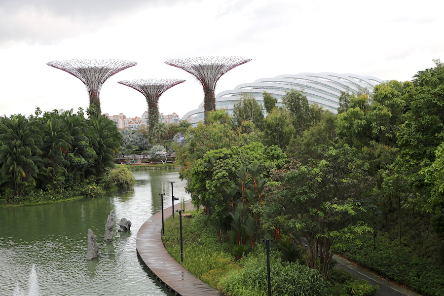 Gardens by the Bay Activity: Stroll the Walkway