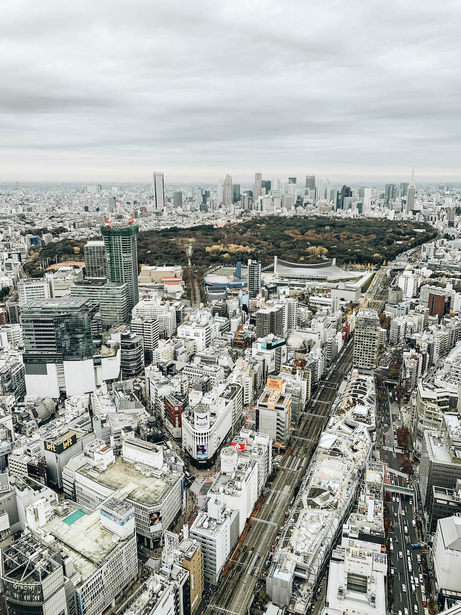 The best View of tokyo from shibuya Scrramble square