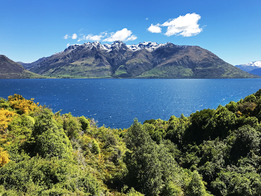 New Zealand Adventure: A Road Trip on the North and South Islands: Queenstown to Te Anau