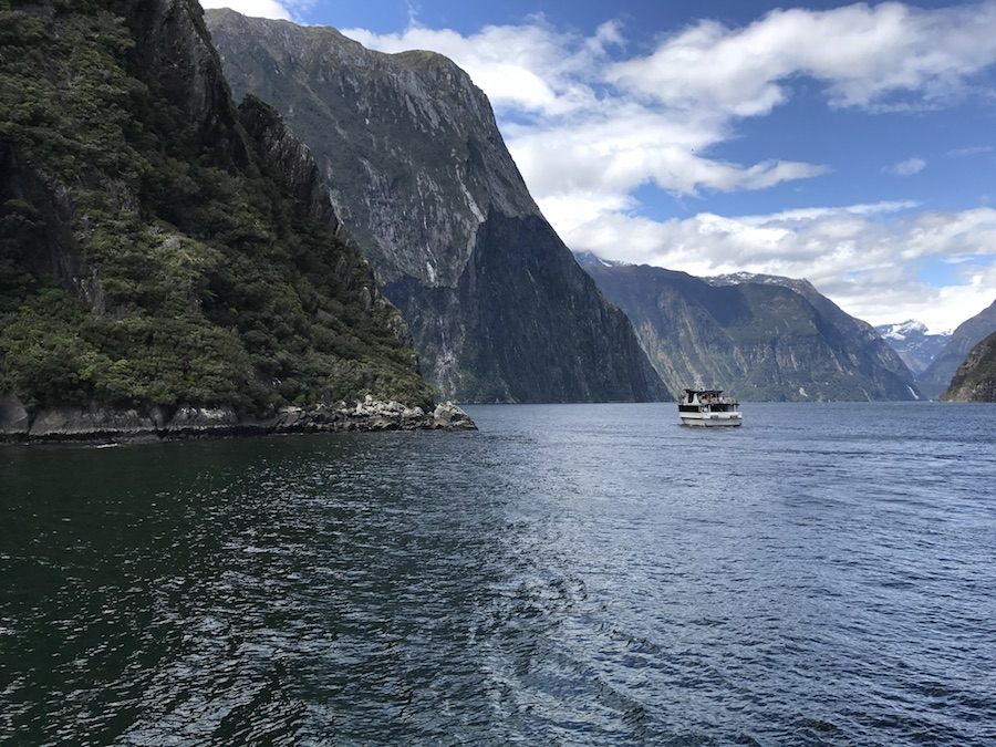 New Zealand Adventure: A Road Trip on the North and South Islands: Milford Sound