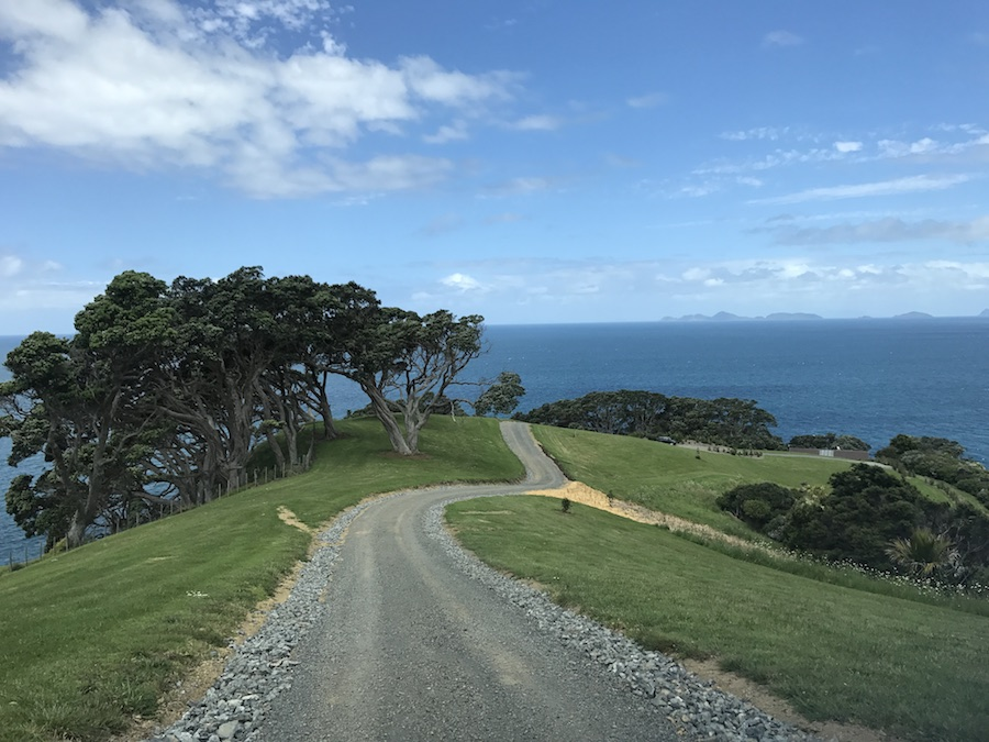 New Zealand Adventure: A Road Trip on the North and South Islands: Driving in Whangarei Heads
