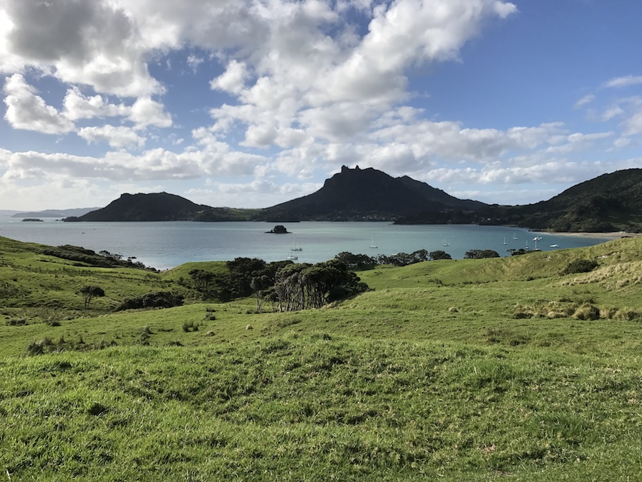 New Zealand Adventure: A Road Trip on the North and South Islands: Urquharts Bay
