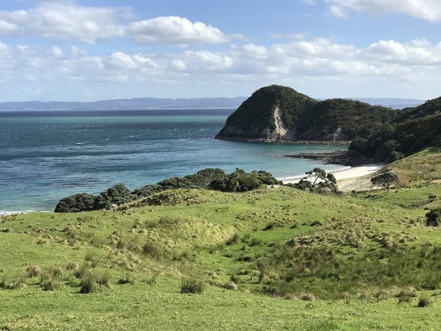 New Zealand Adventure: A Road Trip on the North and South Islands: Smuggler's Bay Overlook