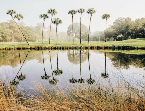 Kiawah Island Bucket List: 6 Best Things to Do on the SC Island