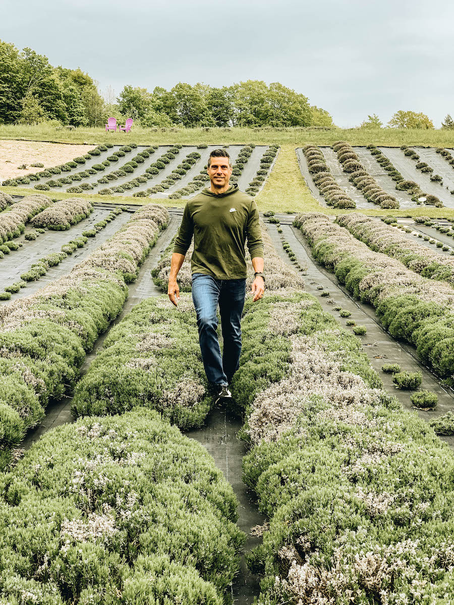 Lavender Hill Farm: Petoskey Bucket List: Things to Do in Northern Michigan