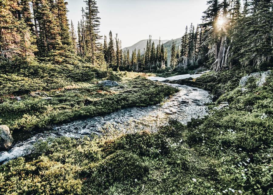 USA Park List: Olympic National Park
