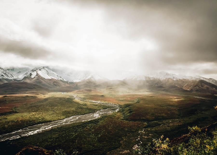Parc national et réserve de Denali