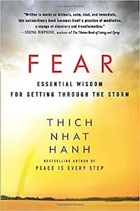 Book about Fear