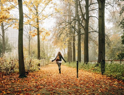 Fall Bucket List: 40 Autumn Activities & Fun Things to Do
