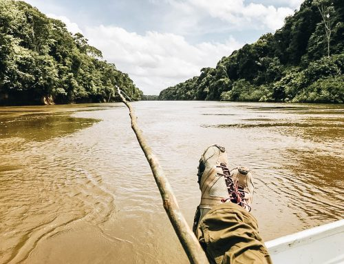 A Guide to Piranha Fishing (& Eating) in the South American Rainforest
