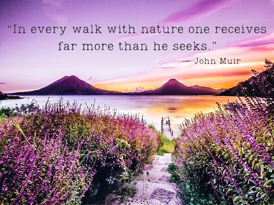 In every walk with nature one receives far more than he seeks.